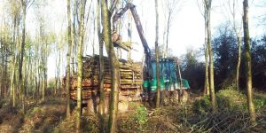forest-machinery